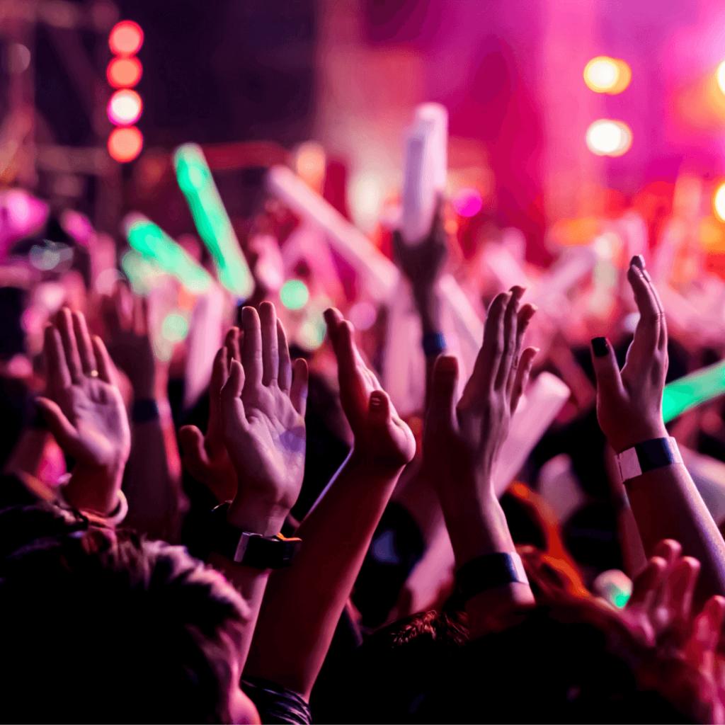 Crowd Management Festival